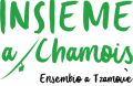 insieme-chamois-verde-trasparente